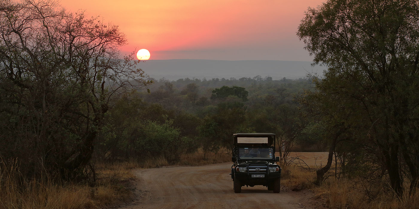Planning your Post Covid Safari