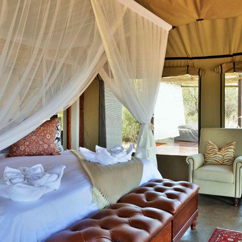 safari-plains-honeymoon-package