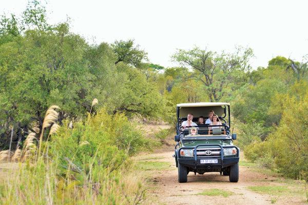 safari-plains-4